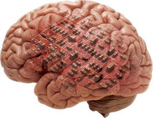 ICCM Brain